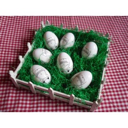 Käfer Ei